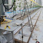 LWL_Spleißarbeiten - im Gartenbau